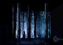 эскизы декораций лес колдун м